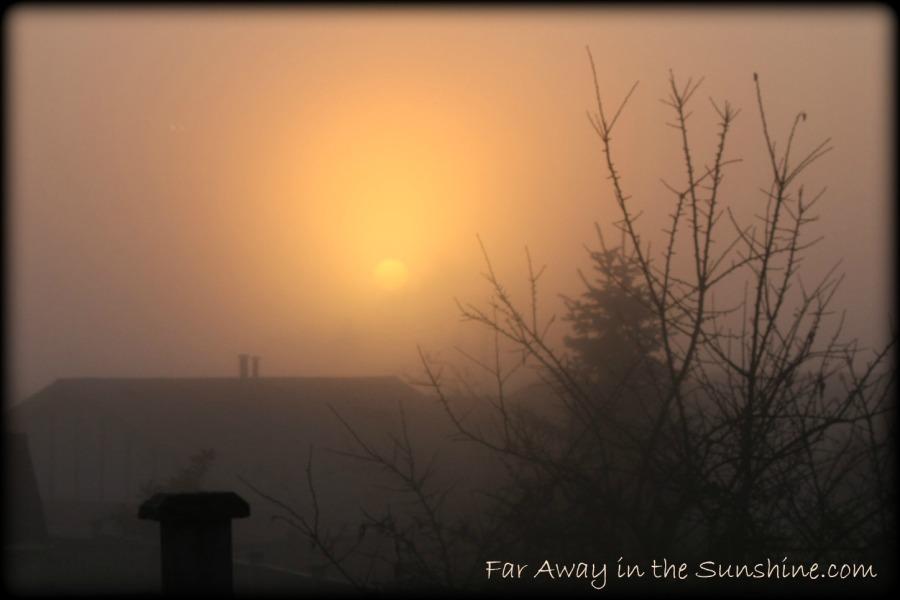 First morning sun