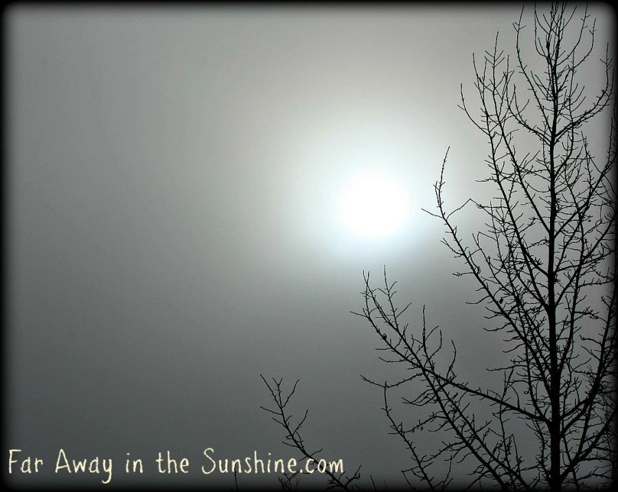Sun and Fog