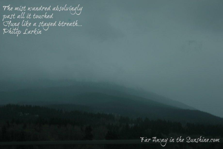 Mist on the hills