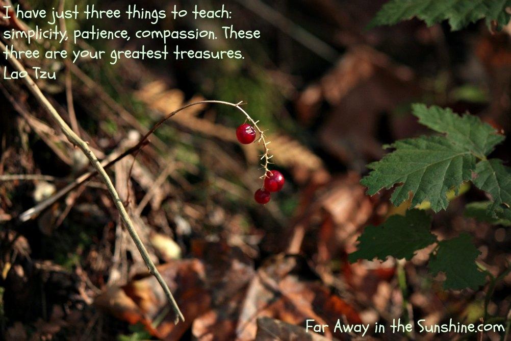 Three things to teach
