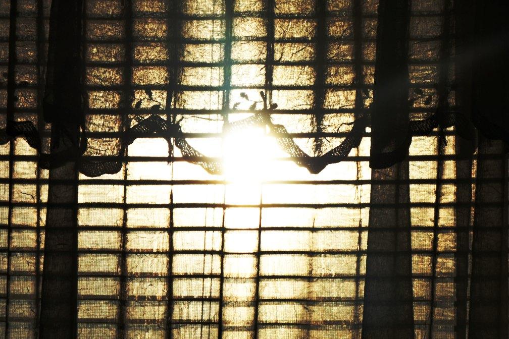 copy-sunlight.jpg