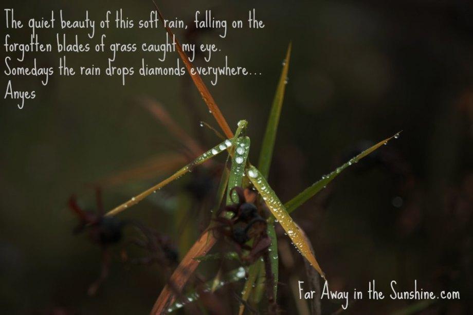 Diamonds and rain