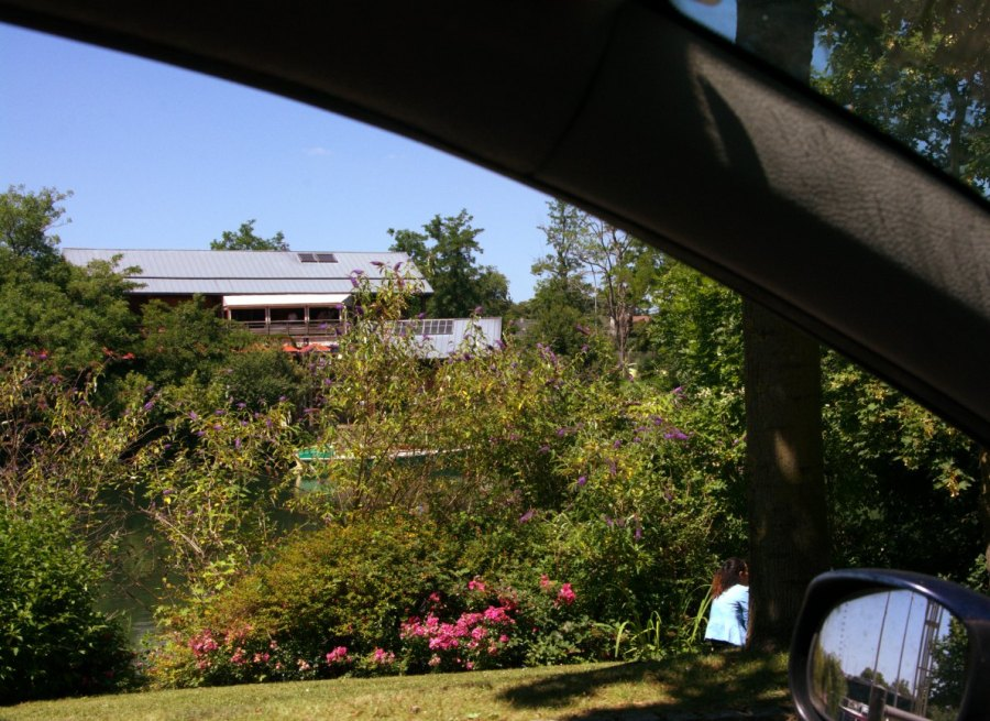 View from the car