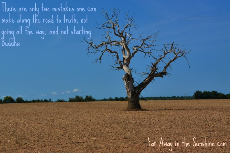 Tree and Truth